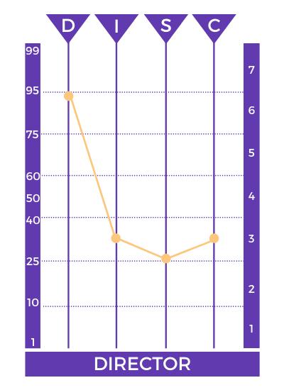 resultados perfil director